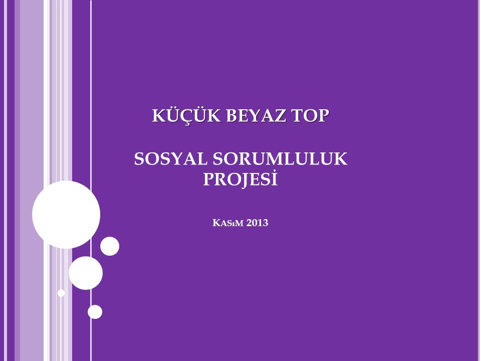 PROJE 2014 AKTİVİTE TAKVİMİ 1.2. 3. 4. 5.