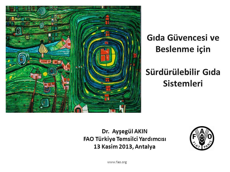 www.fao.org Gıda Güvencesi ve Beslenme için Sürdürülebilir Gıda Sistemleri Dr. Ayşegül AKIN FAO Türkiye Temsilci Yardımcısı 13 Kasim 2013, Antalya