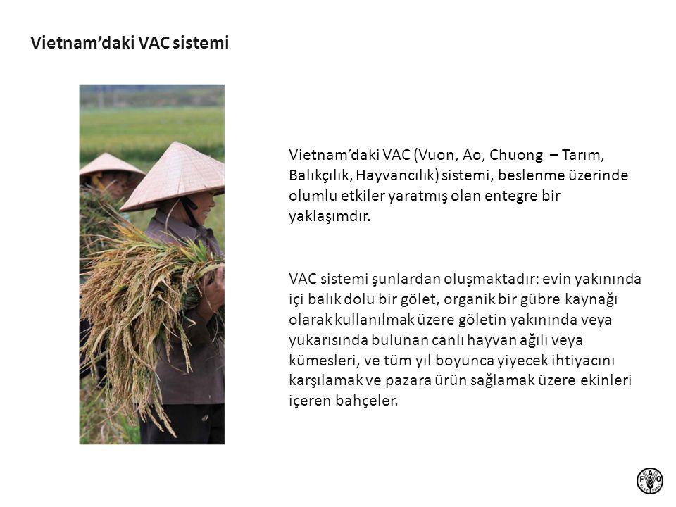 Vietnam'daki VAC (Vuon, Ao, Chuong – Tarım, Balıkçılık, Hayvancılık) sistemi, beslenme üzerinde olumlu etkiler yaratmış olan entegre bir yaklaşımdır.