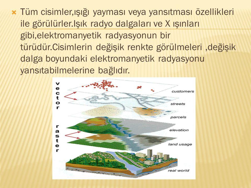  Tüm cisimler,ışığı yayması veya yansıtması özellikleri ile görülürler.Işık radyo dalgaları ve X ışınları gibi,elektromanyetik radyasyonun bir türüdü