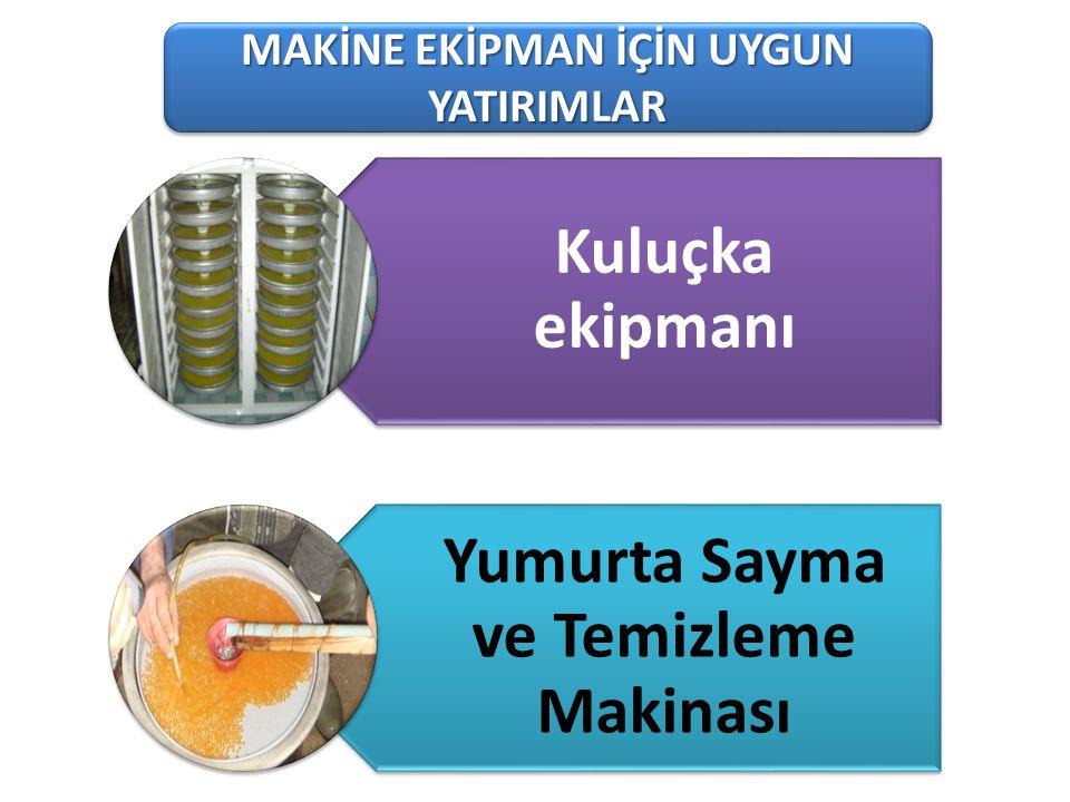 101-1 Süt Üreten Tarımsal İşletmeler MAKİNE EKİPMAN İÇİN UYGUN YATIRIMLAR Kuluçka ekipmanı Yumurta Sayma ve Temizleme Makinası
