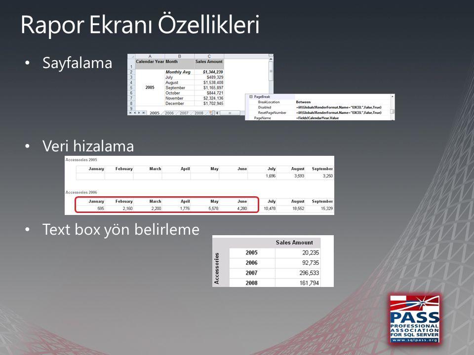 Veri Görselleştirme (Data Visualization)