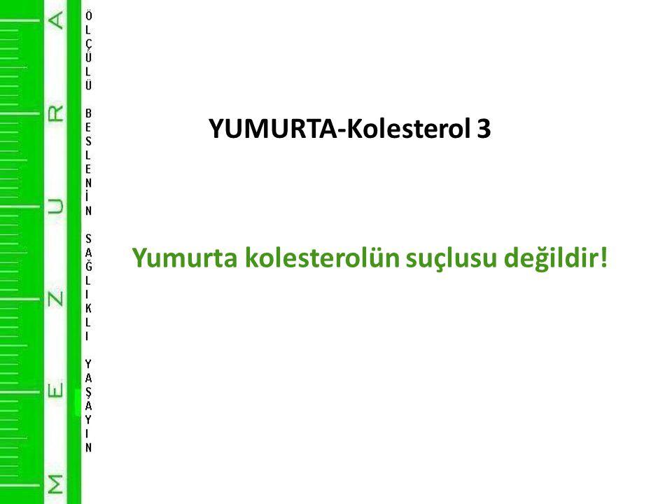 YUMURTA-Kolesterol 3 Yumurta kolesterolün suçlusu değildir!