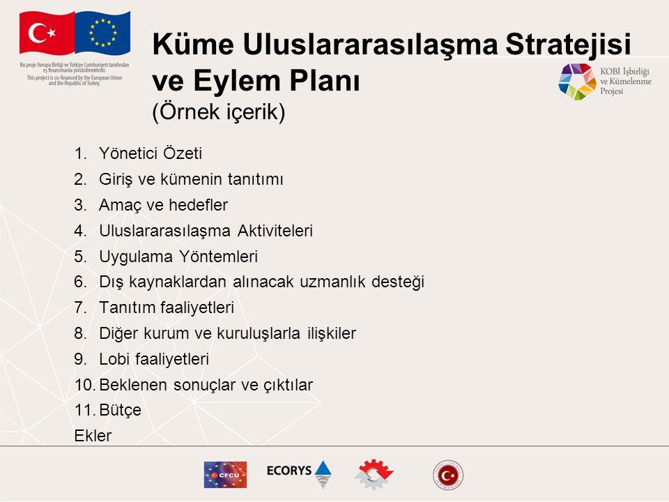 Küme Uluslararasılaşma Stratejisi ve Eylem Planı (Örnek içerik) 1.Yönetici Özeti 2.Giriş ve kümenin tanıtımı 3.Amaç ve hedefler 4.Uluslararasılaşma Ak