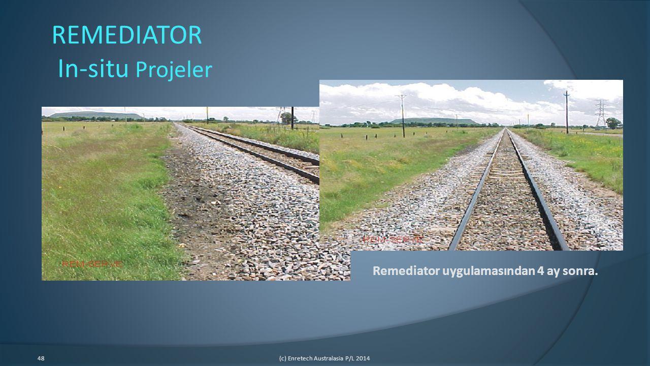 48(c) Enretech Australasia P/L 2014 Remediator uygulamasından 4 ay sonra. REMEDIATOR In-situ Projeler