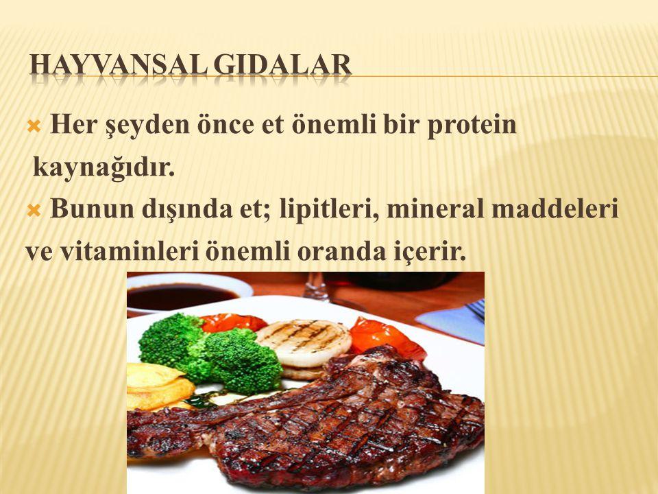  Her şeyden önce et önemli bir protein kaynağıdır.  Bunun dışında et; lipitleri, mineral maddeleri ve vitaminleri önemli oranda içerir.