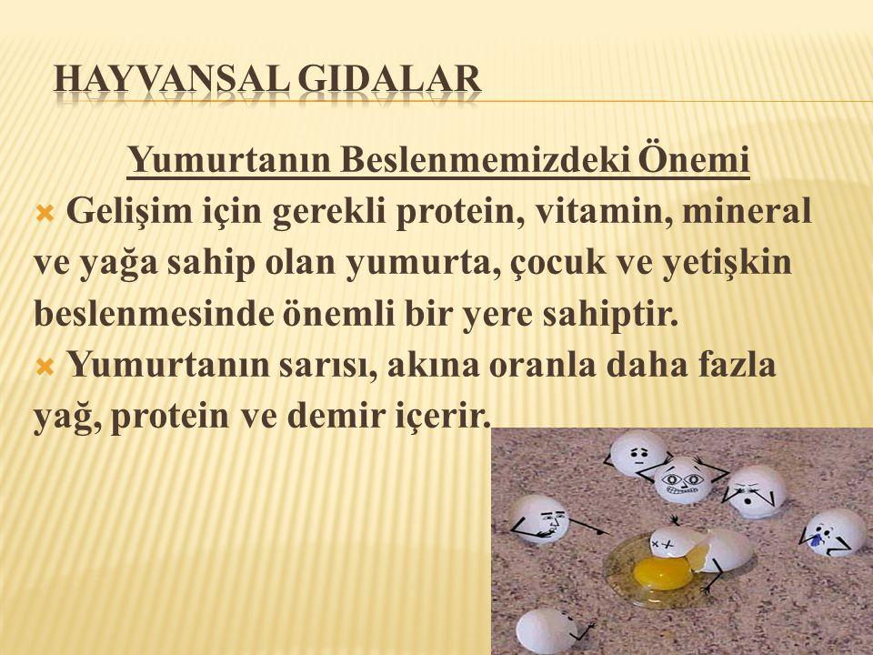 Yumurtanın Beslenmemizdeki Önemi  Gelişim için gerekli protein, vitamin, mineral ve yağa sahip olan yumurta, çocuk ve yetişkin beslenmesinde önemli b