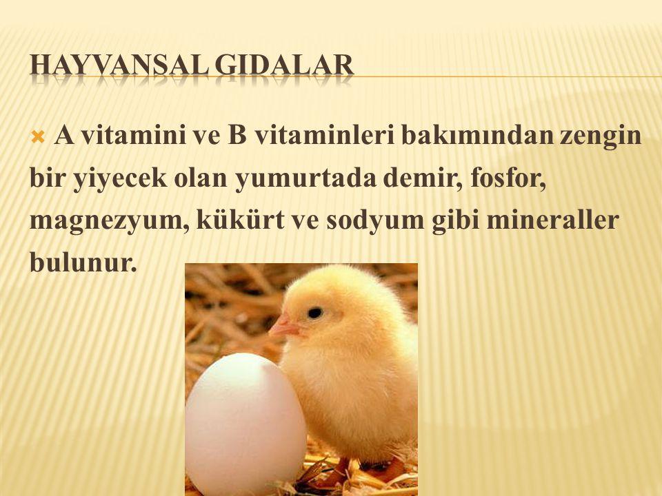  A vitamini ve B vitaminleri bakımından zengin bir yiyecek olan yumurtada demir, fosfor, magnezyum, kükürt ve sodyum gibi mineraller bulunur.