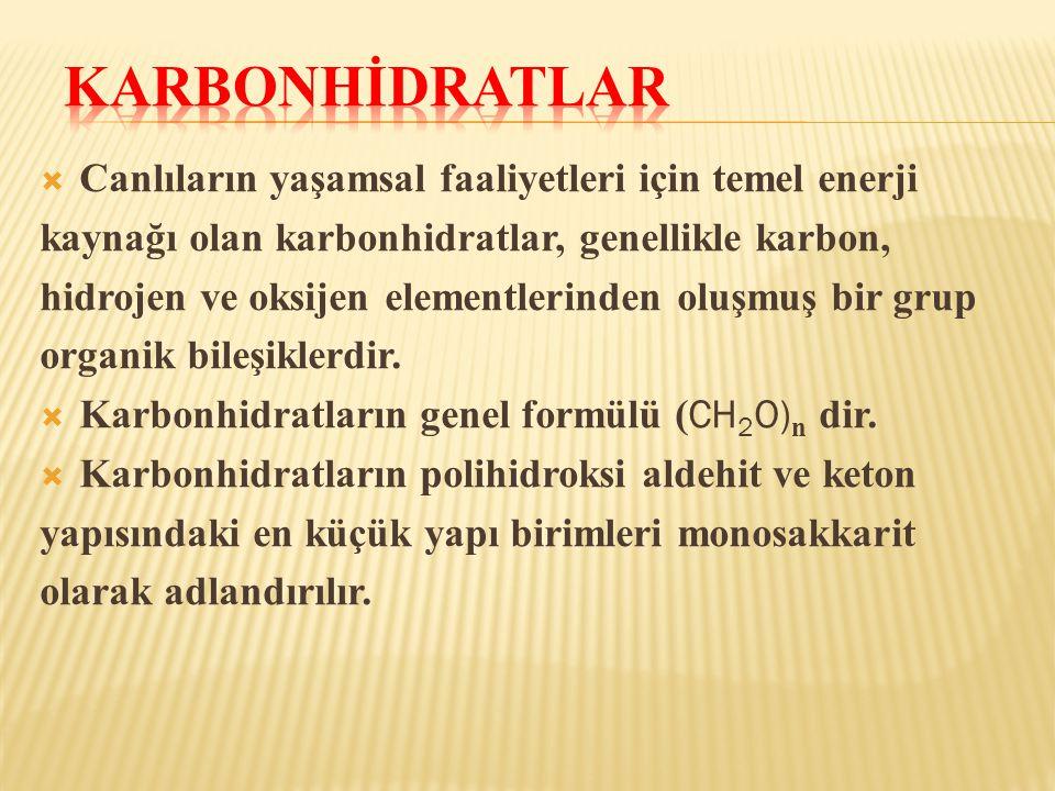  Canlıların yaşamsal faaliyetleri için temel enerji kaynağı olan karbonhidratlar, genellikle karbon, hidrojen ve oksijen elementlerinden oluşmuş bir