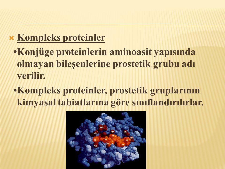  Kompleks proteinler •Konjüge proteinlerin aminoasit yapısında olmayan bileşenlerine prostetik grubu adı verilir. •Kompleks proteinler, prostetik gru