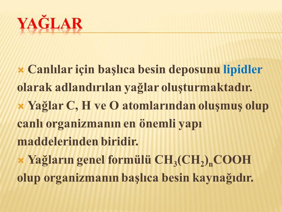  Canlılar için başlıca besin deposunu lipidler olarak adlandırılan yağlar oluşturmaktadır.  Yağlar C, H ve O atomlarından oluşmuş olup canlı organiz