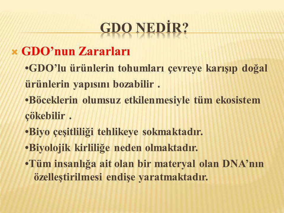  GDO'nun Zararları •GDO'lu ürünlerin tohumları çevreye karışıp doğal ürünlerin yapısını bozabilir. •Böceklerin olumsuz etkilenmesiyle tüm ekosistem ç