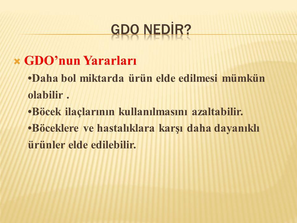  GDO'nun Yararları •Daha bol miktarda ürün elde edilmesi mümkün olabilir. •Böcek ilaçlarının kullanılmasını azaltabilir. •Böceklere ve hastalıklara k