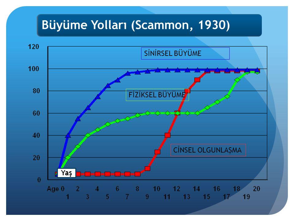 Büyüme Yolları (Scammon, 1930) Yaş SİNİRSEL BÜYÜME FİZİKSEL BÜYÜME CİNSEL OLGUNLAŞMA