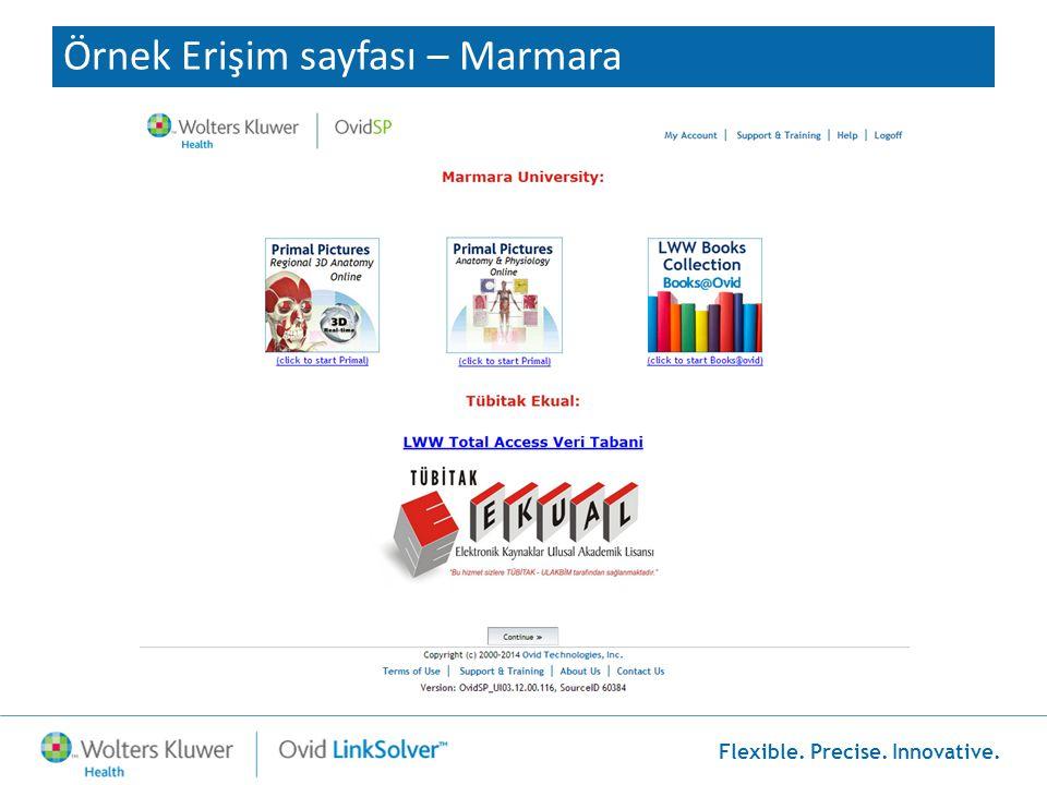 Flexible. Precise. Innovative. Örnek Erişim sayfası – Marmara