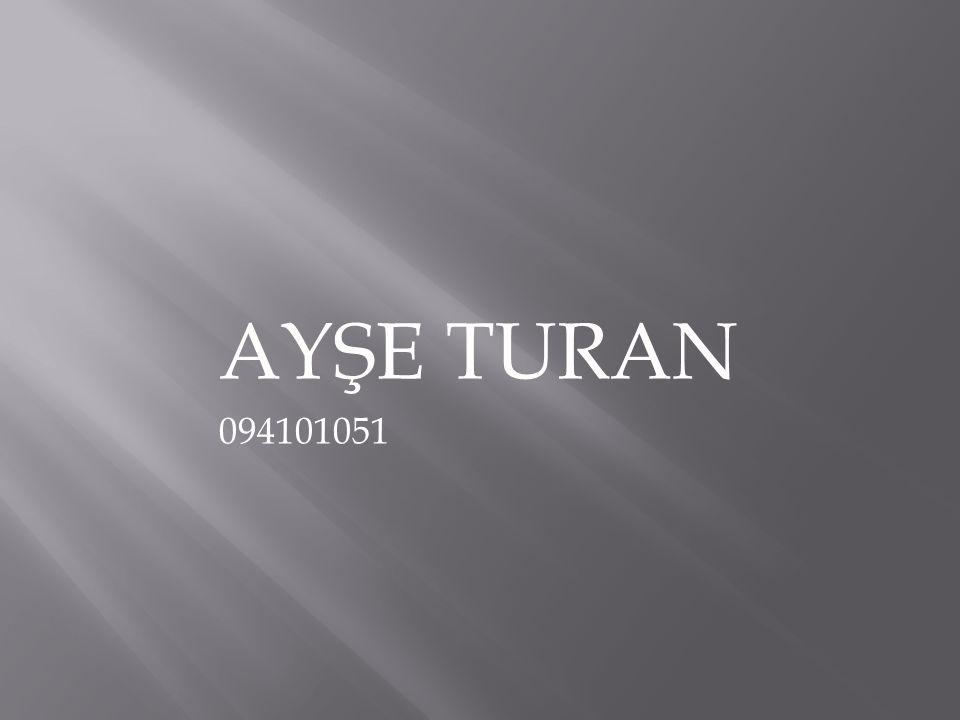 AYŞE TURAN 094101051