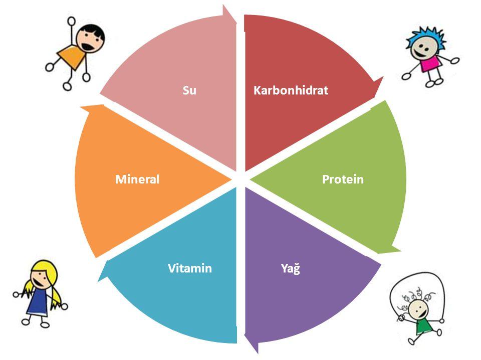 Karbonhidrat Protein YağVitamin Mineral Su