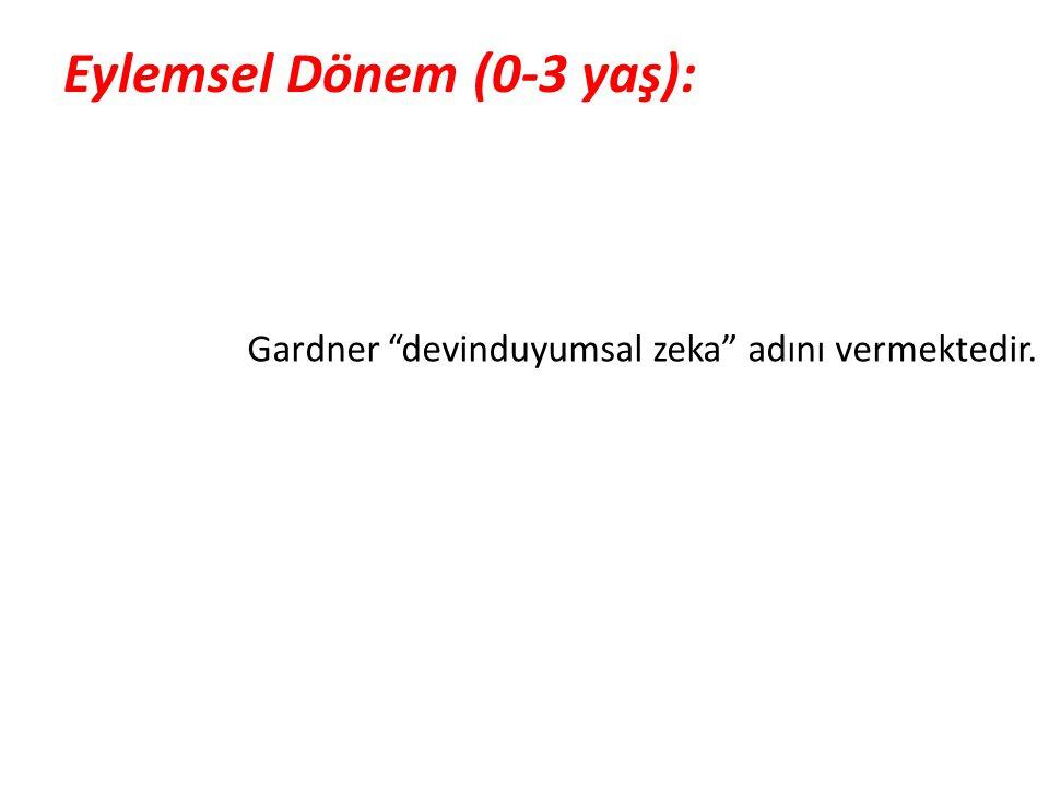 """Eylemsel Dönem (0-3 yaş): Gardner """"devinduyumsal zeka"""" adını vermektedir."""