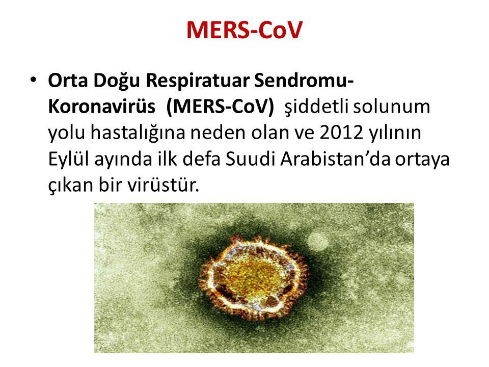 MERS-CoV • Orta Doğu Respiratuar Sendromu- Koronavirüs (MERS-CoV) şiddetli solunum yolu hastalığına neden olan ve 2012 yılının Eylül ayında ilk defa S
