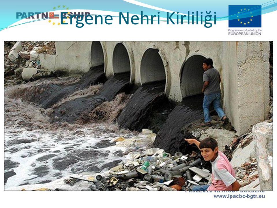Ergene Nehri Kirliliği