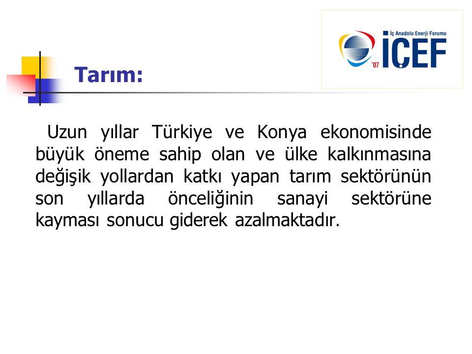 Tarım: Uzun yıllar Türkiye ve Konya ekonomisinde büyük öneme sahip olan ve ülke kalkınmasına değişik yollardan katkı yapan tarım sektörünün son yıllar