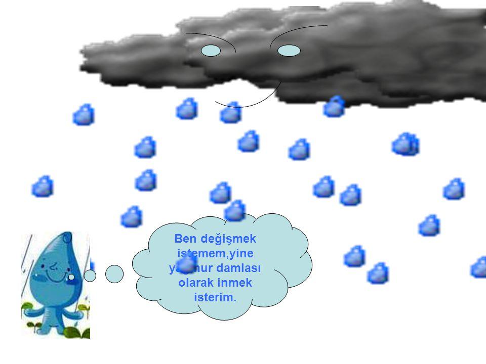 Ben değişmek istemem,yine yağmur damlası olarak inmek isterim.