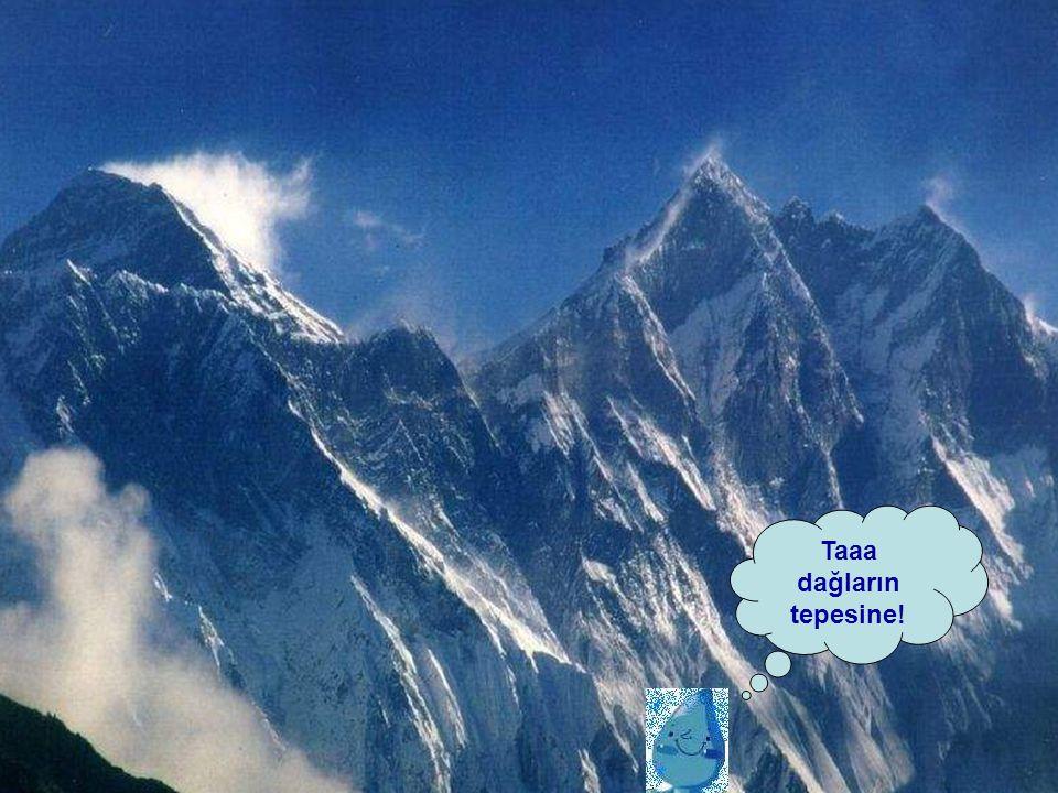 Taaa dağların tepesine!