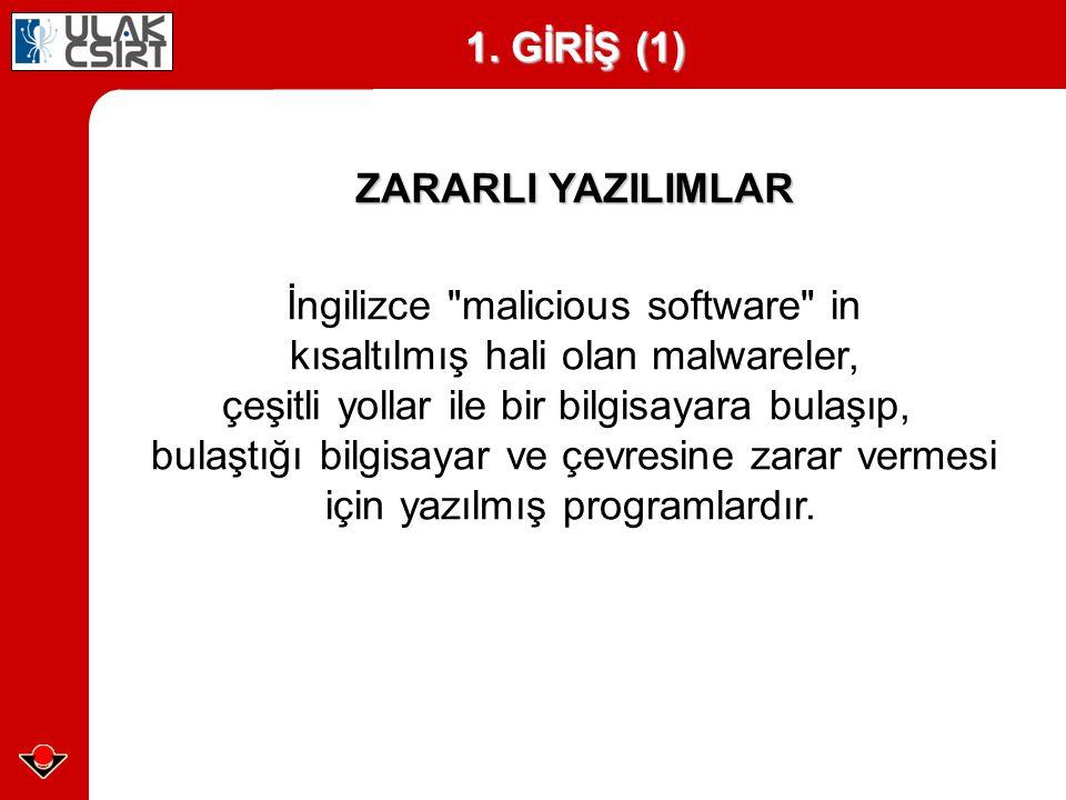 İngilizce malicious software in kısaltılmış hali olan malwareler, çeşitli yollar ile bir bilgisayara bulaşıp, bulaştığı bilgisayar ve çevresine zarar vermesi için yazılmış programlardır.