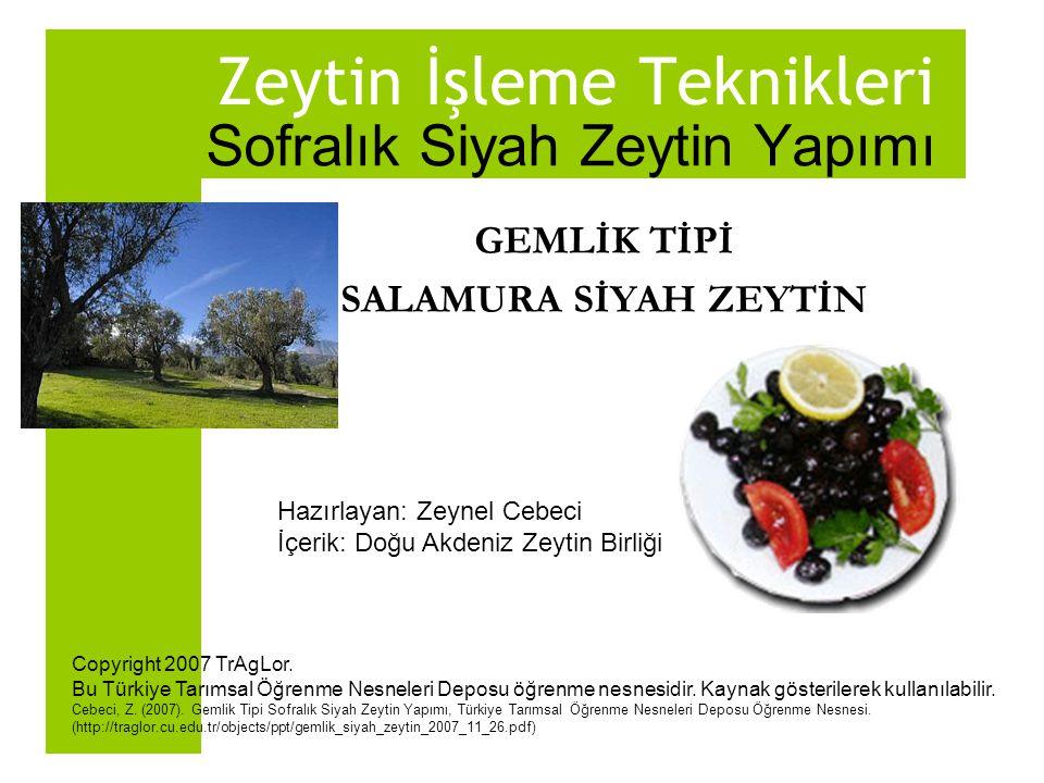 Zeytin İşleme Teknikleri Sofralık Siyah Zeytin Yapımı GEMLİK TİPİ SALAMURA SİYAH ZEYTİN Hazırlayan: Zeynel Cebeci İçerik: Doğu Akdeniz Zeytin Birliği