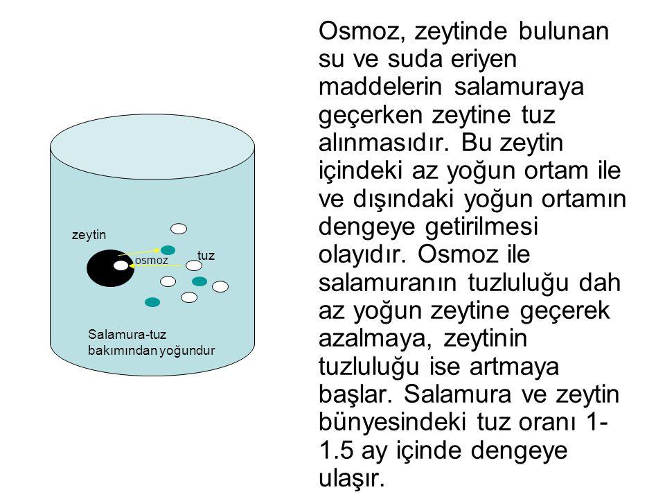Osmoz, zeytinde bulunan su ve suda eriyen maddelerin salamuraya geçerken zeytine tuz alınmasıdır. Bu zeytin içindeki az yoğun ortam ile ve dışındaki y