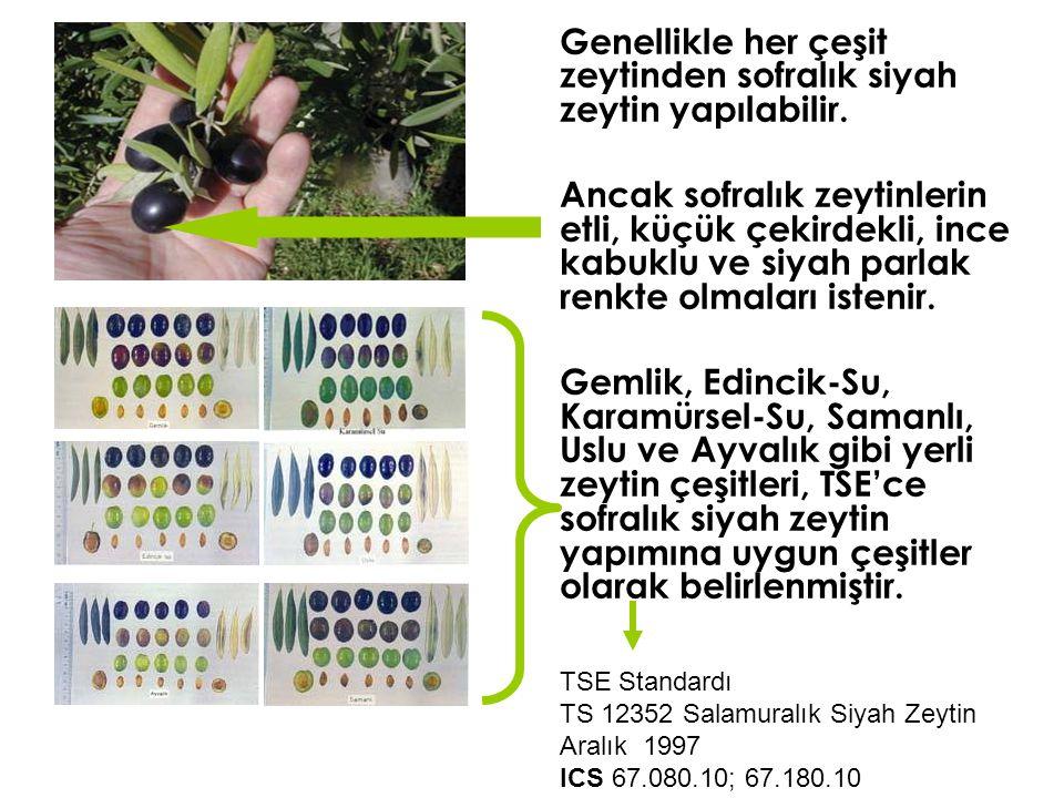 Genellikle her çeşit zeytinden sofralık siyah zeytin yapılabilir. Ancak sofralık zeytinlerin etli, küçük çekirdekli, ince kabuklu ve siyah parlak renk