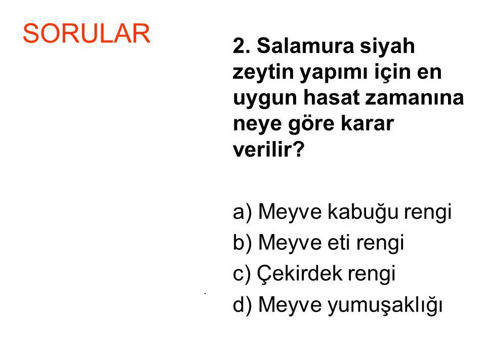 2. Salamura siyah zeytin yapımı için en uygun hasat zamanına neye göre karar verilir? a) Meyve kabuğu rengi b) Meyve eti rengi c) Çekirdek rengi d) Me