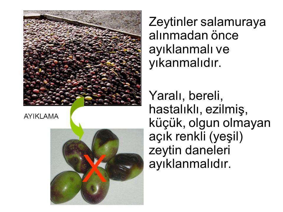 Zeytinler salamuraya alınmadan önce ayıklanmalı ve yıkanmalıdır. Yaralı, bereli, hastalıklı, ezilmiş, küçük, olgun olmayan açık renkli (yeşil) zeytin