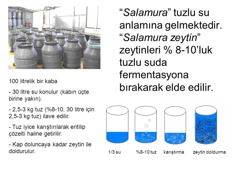 """""""Salamura"""" tuzlu su anlamına gelmektedir. """"Salamura zeytin"""" zeytinleri % 8-10'luk tuzlu suda fermentasyona bırakarak elde edilir. 100 litrelik bir kab"""