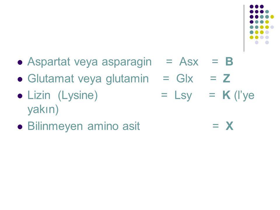  Aspartat veya asparagin = Asx = B  Glutamat veya glutamin = Glx = Z  Lizin (Lysine) = Lsy = K (l'ye yakın)  Bilinmeyen amino asit = X