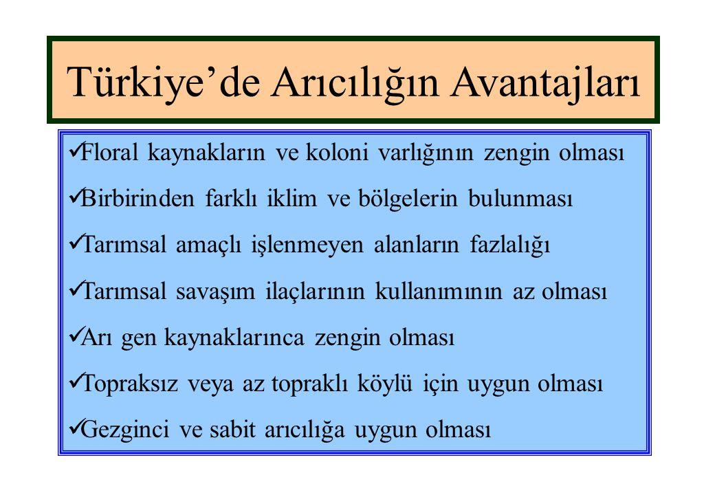 Türkiye'de Arıcılığın Avantajları  Floral kaynakların ve koloni varlığının zengin olması  Birbirinden farklı iklim ve bölgelerin bulunması  Tarımsa