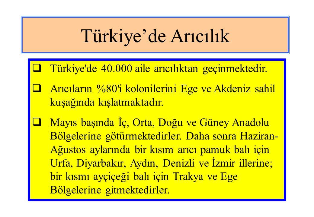 Türkiye'de Arıcılık  Arıcıların büyük bir kısmı da çam balı üretmek için Eylül-Kasım ayları arasında Bodrum, Muğla, Söke, Marmaris yörelerinde konaklamaktadır.