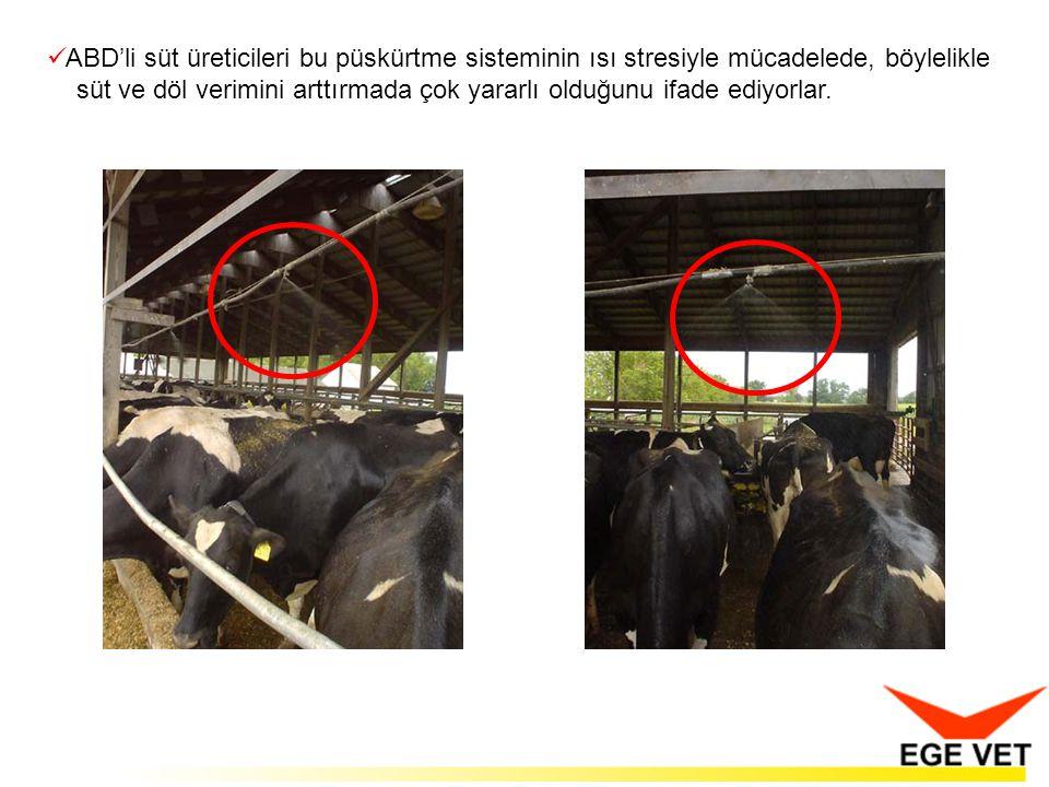  ABD'li süt üreticileri bu püskürtme sisteminin ısı stresiyle mücadelede, böylelikle süt ve döl verimini arttırmada çok yararlı olduğunu ifade ediyorlar.