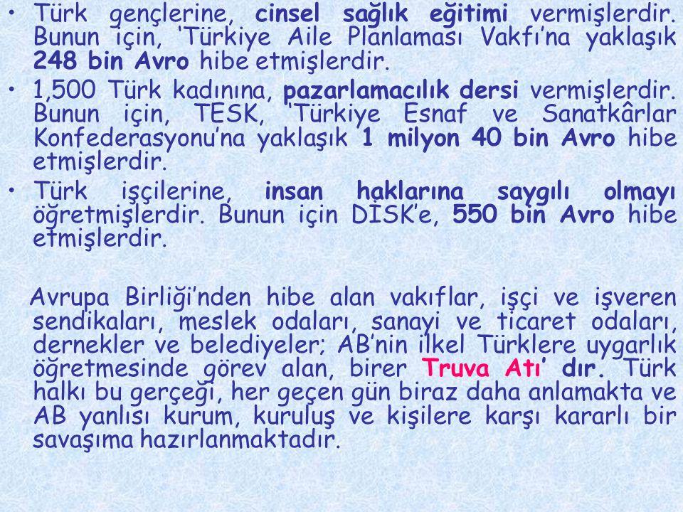 •Türk gençlerine, cinsel sağlık eğitimi vermişlerdir. Bunun için, 'Türkiye Aile Planlaması Vakfı'na yaklaşık 248 bin Avro hibe etmişlerdir. •1,500 Tür