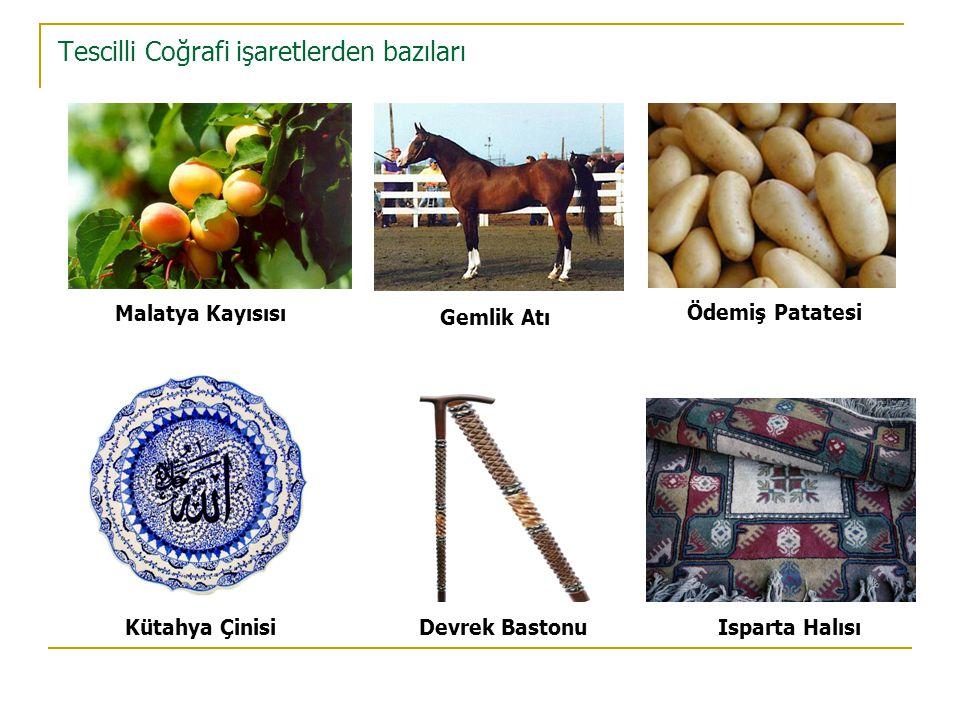 Tescilli Coğrafi işaretlerden bazıları Malatya Kayısısı Gemlik Atı Ödemiş Patatesi Isparta HalısıDevrek BastonuKütahya Çinisi