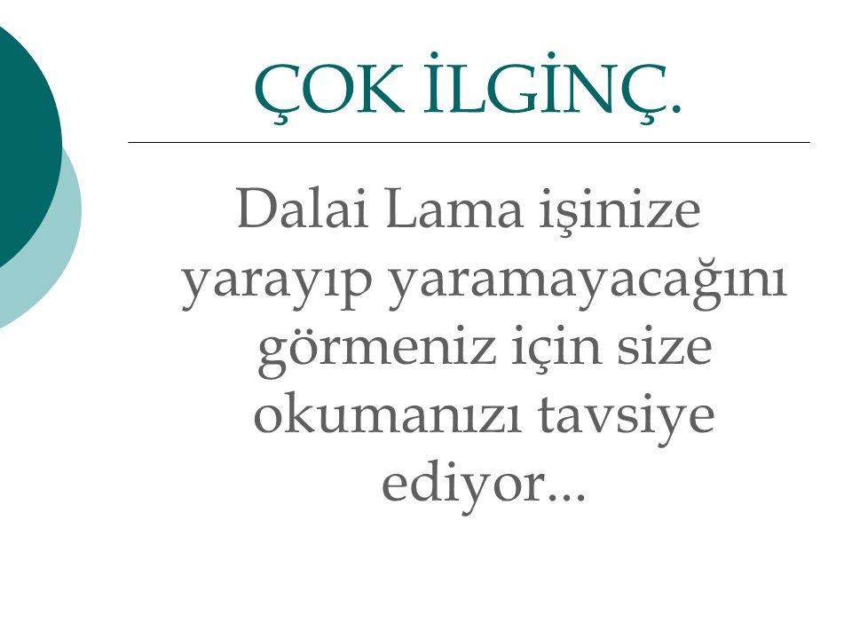 Dalai Lama işinize yarayıp yaramayacağını görmeniz için size okumanızı tavsiye ediyor...