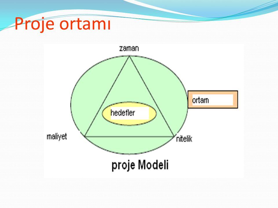 Proje ortamı