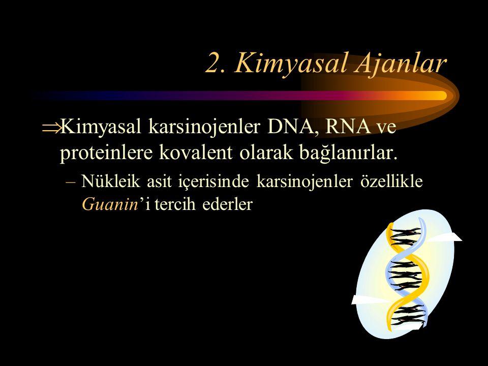 2. Kimyasal Ajanlar  Kimyasal karsinojenler DNA, RNA ve proteinlere kovalent olarak bağlanırlar. –Nükleik asit içerisinde karsinojenler özellikle Gua
