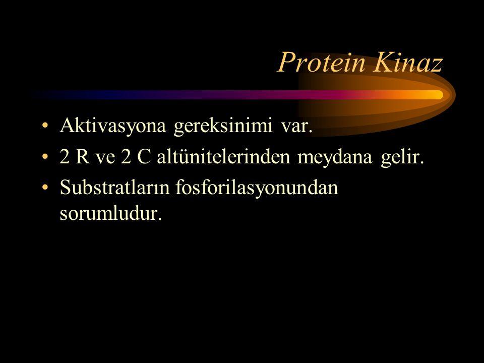 Protein Kinaz •Aktivasyona gereksinimi var. •2 R ve 2 C altünitelerinden meydana gelir. •Substratların fosforilasyonundan sorumludur.