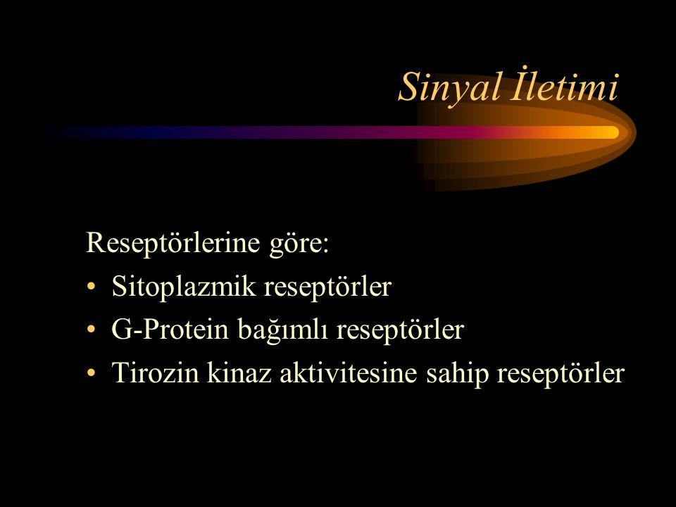 Sinyal İletimi Reseptörlerine göre: •Sitoplazmik reseptörler •G-Protein bağımlı reseptörler •Tirozin kinaz aktivitesine sahip reseptörler