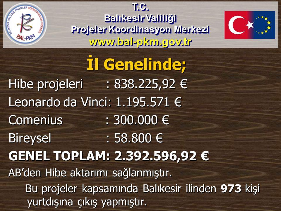 İl Genelinde; Hibe projeleri : 838.225,92 € Leonardo da Vinci: 1.195.571 € Comenius : 300.000 € Bireysel : 58.800 € GENEL TOPLAM: 2.392.596,92 € AB'de