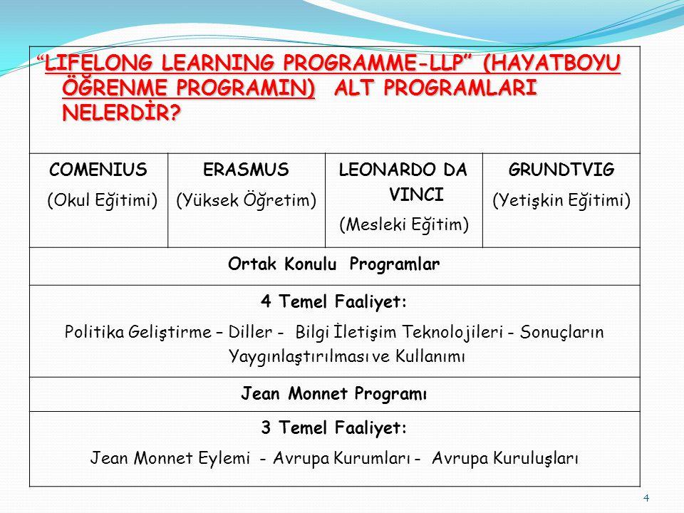 4 LIFELONG LEARNING PROGRAMME-LLP (HAYATBOYU ÖĞRENME PROGRAMIN) ALT PROGRAMLARI NELERDİR.