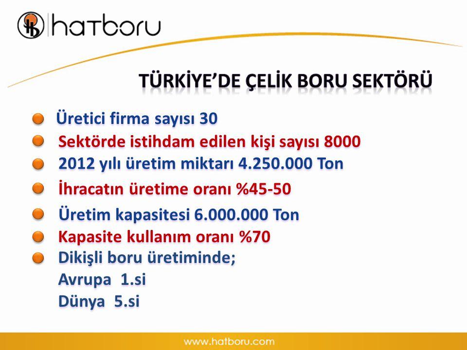 Üretici firma sayısı 30 Sektörde istihdam edilen kişi sayısı 8000 2012 yılı üretim miktarı 4.250.000 Ton İhracatın üretime oranı %45-50 Üretim kapasitesi 6.000.000 Ton Dikişli boru üretiminde; Avrupa 1.si Dünya 5.si Kapasite kullanım oranı %70