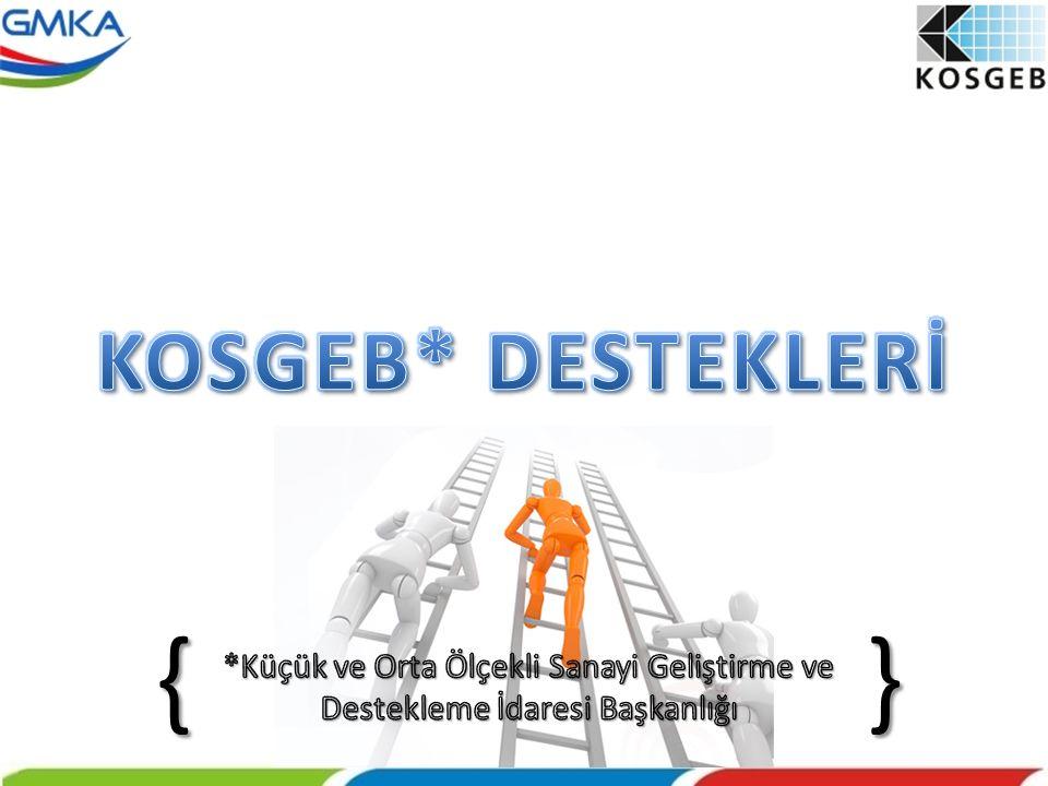 Proje hazırlama kapasitesi düşük KOBİ'ler ile KOSGEB hedef kitlesine yeni dahil olmuş sektörlerdeki KOBİ'lerin de mevcut KOSGEB desteklerinden faydalanması,  KOBİ'lerin kaliteli ve verimli mal/hizmet üretmelerinin sağlanması,  Mevcut KOSGEB desteklerinin revize edilerek daha fazla KOBİ'nin bu desteklerden yaygın şekilde faydalanması,  KOBİ'lerin rekabet güçlerini ve düzeylerini yükseltmek amacıyla genel işletme geliştirme faaliyetlerinin teşvik edilmesi,  KOBİ'lerin yurt içi ve yurt dışı pazar paylarını artırmak amacıyla tanıtım ve pazarlama faaliyetlerinin geliştirilmesi.