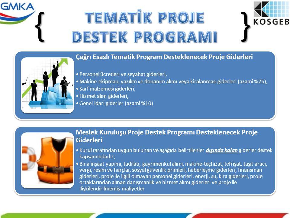 Çağrı Esaslı Tematik Program Desteklenecek Proje Giderleri •Personel ücretleri ve seyahat giderleri, •Makine-ekipman, yazılım ve donanım alımı veya ki
